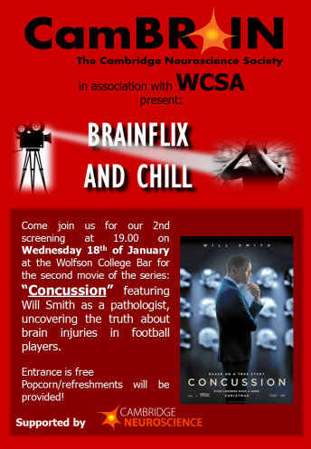 Brainflix and chill_Concussion.png