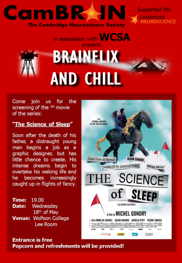 Brainflix and chill_The Science of Sleep.png